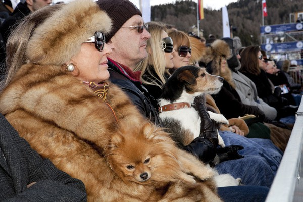 2011, Martin Parr, Time Off [Switzerland, St Moritz]
